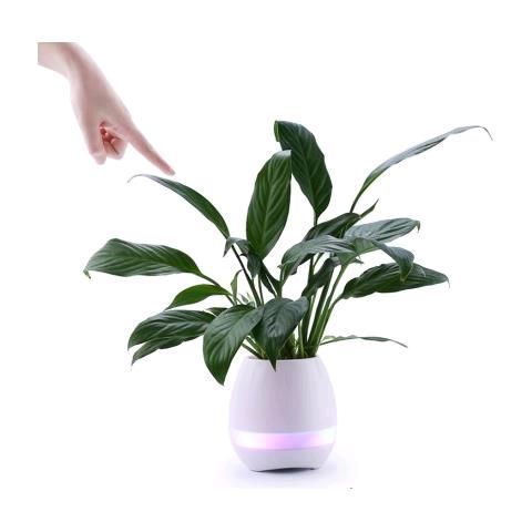 Vaso Fiori.Prodotto Cm3188 Vaso Fiori Musicale Multifunzioni Vaso